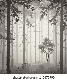 forest air landscape with birds, light colors, vector illustration