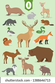 Forest animals big collection. Vector set.