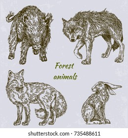 Forest animals.  Boar, wolf, fox and hare. Set. Engraving style. Vector illustration.