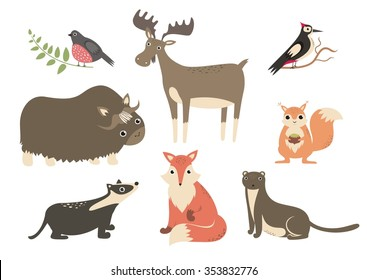 The forest animals cartoon characters. Bullfinch, woodpecker, elk, badger, fox, squirrel, weasel and musk ox. Flat vector image.