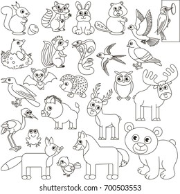 Group of Animals Images, Stock Photos & Vectors   Shutterstock