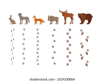 Forest animals with foot prints cartoon style colorful vector illustration. Collection of wild nature mammals with tracks silhouette: fox, wolf, bear, hare, elk, boar