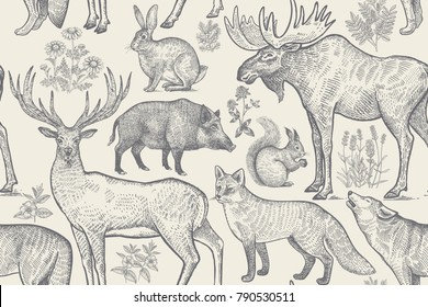 Forest animals and plants seamless pattern. Deer, wolf, fox, boar, squirrel, hare, elk and flower lavender, chamomile and clover. Hand drawing. Black and white. Vintage vector illustration