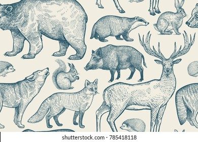 Forest animals seamless pattern. Deer, wolf, fox, boar, squirrel, bear, hare, hedgehog and badger. Hand drawing. Blue and white color. Vintage vector illustration.