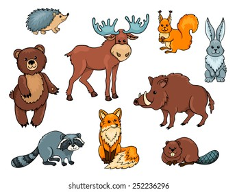 Forest animals set. Isolated on white. Cartoon vector illustration.