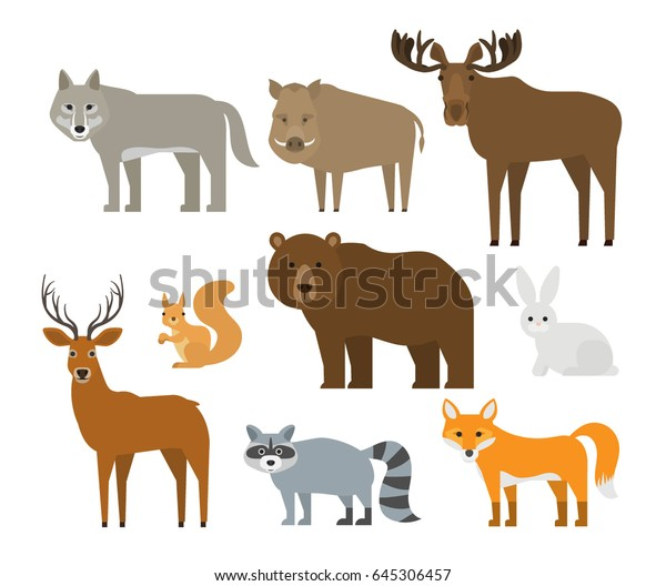 Forest Animals Set On White Background Stock Vector (Royalty Free ...