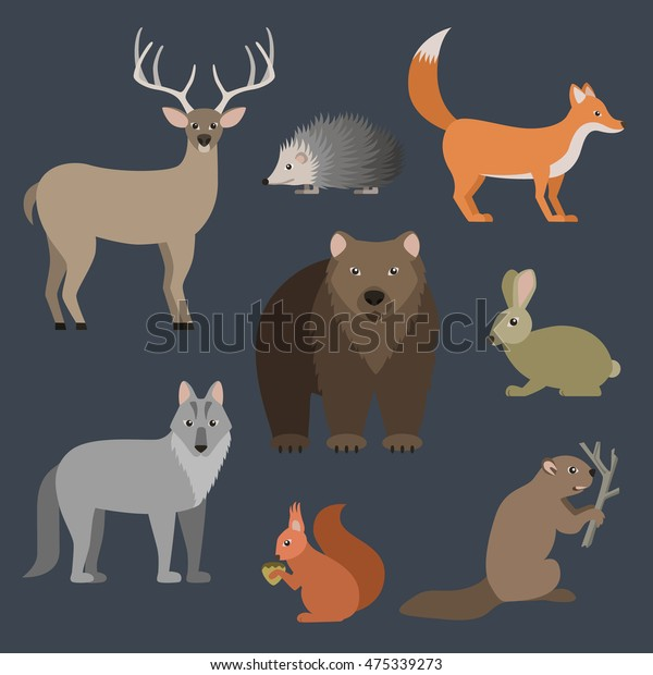 Forest Animals Vector Set Stock Image | Download Now