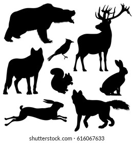 Forest animals vector silhouettes set. Predator animal mammal, illustration of black silhouette animal