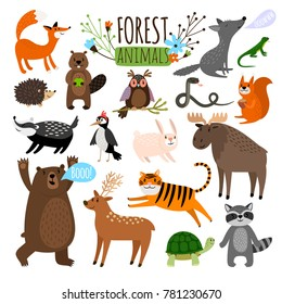 Forest animals. Woodland cute animal set drawing vector illustration like moose or deer and raccoon, fox and bear isolated on white