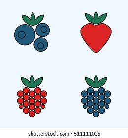 Forest berries: raspberry, blueberry, strawberry, blackberry.  Vector illustration