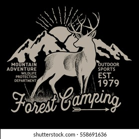 Forest camping.Vector graphic.