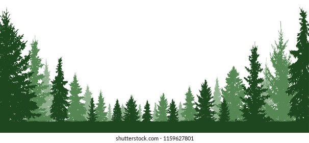 Forest evergreen, coniferous trees, silhouette vector background. Isolated trees
