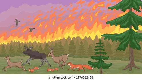 Forest fire and fleeing animals. Natural disaster.