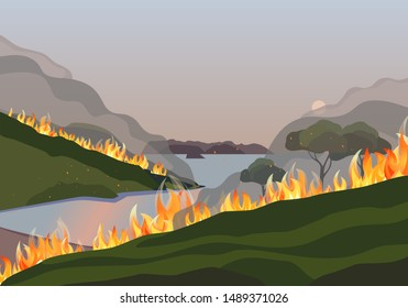 Forest fires disaster mountain trees flat vector. Wildfires destroy woodland environment cartoon. Fire smoke on water, sun through haze. Burning forest fire blaze ravaged mountains region illustration