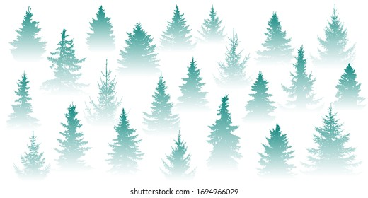 Forest in the fog. Isolated Christmas tree in misty forest on a white background. Vector illustration
