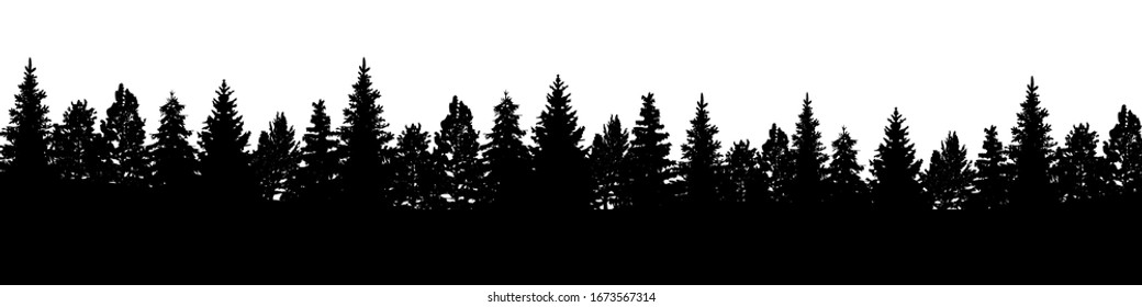Forest, group of black trees silhouettes - stock vector