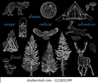 Forest night adventure: glamping tent, bonfire, camping lamp, full moon, spruce, fir tree, mushrooms, fox, hare, deer, owl. Hand drawn vintage engraving style vector illustration white on black.