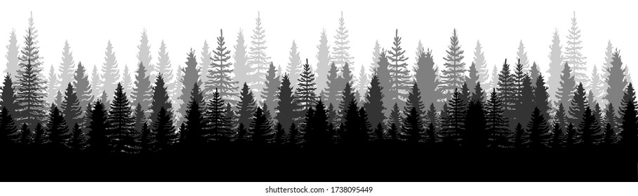 Forest Panorama view. Pines. Spruce nature landscape. Forest background. Set of Pine, Spruce and Christmas Tree on White background. Silhouette forest background. Vector illustration