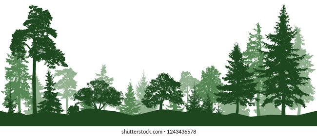 Forest, park, alley. Landscape of isolated trees. Silhouette vector