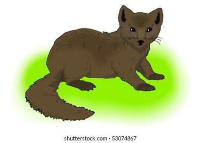 forest predator