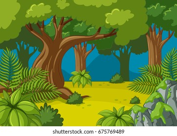 Forest scene with big trees illustration