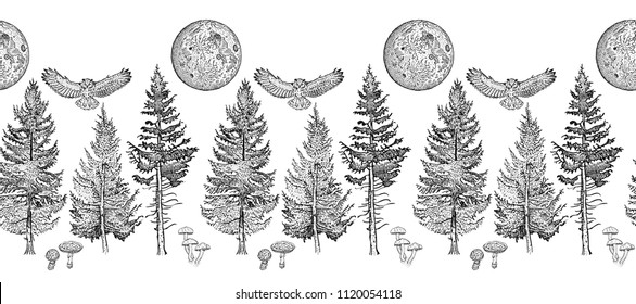 Forest seamless border ornament: spruce, fir tree, mushroom, owl, full moon. Endless horizontal pattern brush. Elements for invitation, greeting card, poster design, decoration, textile print.