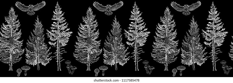 Forest seamless border ornament white: fir trees, mushrooms, owl. Endless horizontal pattern brush. Isolated elements for invitation, greeting card, pattern design, poster, decoration, textile print.