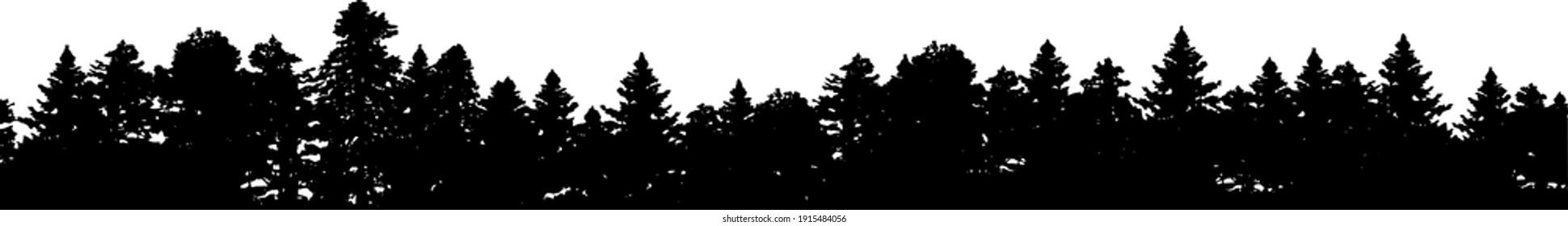 Forest silhouette - border, vector EPS 10 illustration.