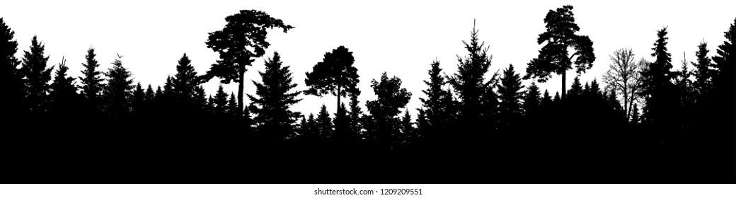 Forest silhouette vector. Scotch fir, Christmas Tree, spruce, fir, pine. Seamless panorama
