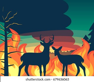 Forest wildfire with deer and fawn looking on wildfire vector illustration for poster or banner print