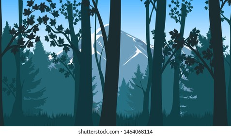 Forests hills. Pines and deciduous forest with mountains vector illustration, mountainous taiga inspirational scenic landscape, misty forested alpine backdrop