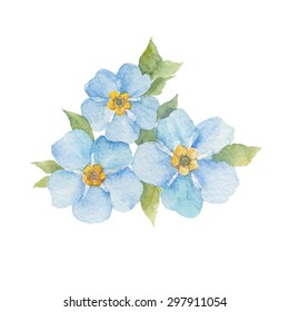 Forget-me-not flowers isolated on white background. Vector, watercolor hand drawn  illustration.
