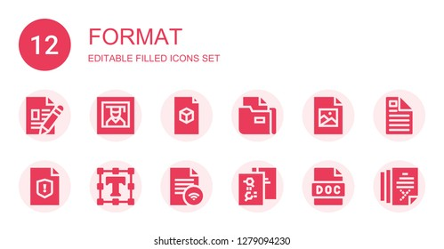 format icon set. Collection of 12 filled format icons included File, Photography, Jpeg, Text editor, Doc