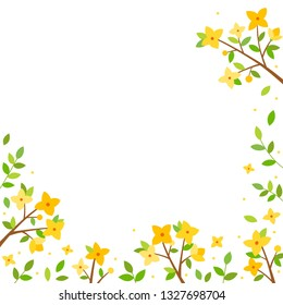 Forsythia flowers background