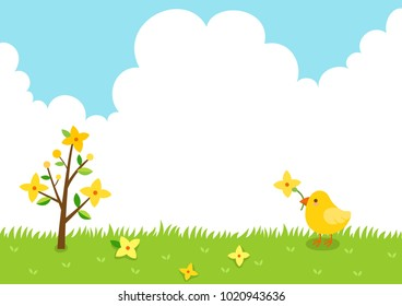 Forsythia flowers and cute little chick.Spring background