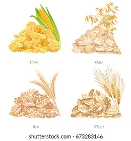 Four batches with cereal flakes, ears and names / Batches of corn, oats, rye and wheat flakes