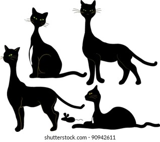 four black cats and a mouse