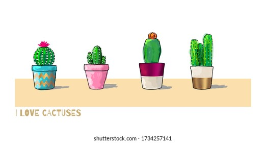 Four cacti in pots isolated on white background. Vector Illustration