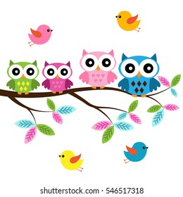 Four colorful owls sitting on the branch and flying birds on a white background