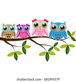 Four colorful owls sitting on the branch on a white background