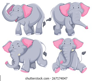 Four elephants in diferent poses