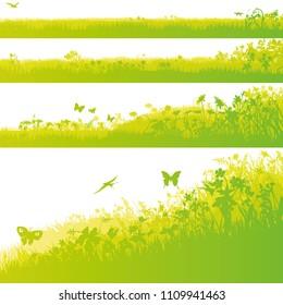 Four green grass fields in the garden