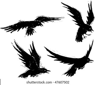Four illustrated grungy crows. Vector file. Each crow is on a separate layer.