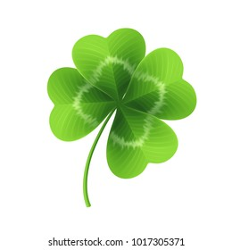 Four leaf clover isolated on white. Vector illustration EPS10