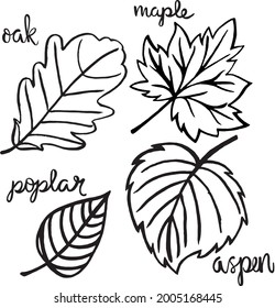 Four Leaf Vector and Name Set