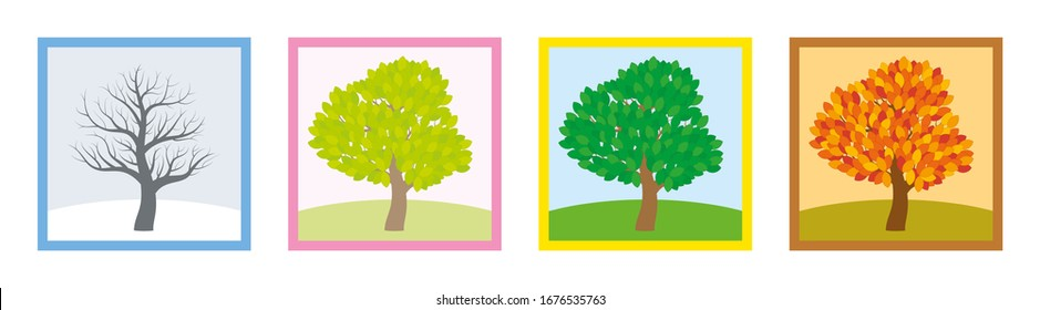 Four seasons. Trees in winter, spring, summer and fall with different foliage in typical colors and shades while the leaves turn throughout the course of a year. Vector illustration.
