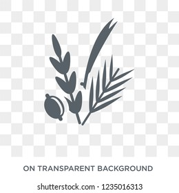 Four Species icon. Trendy flat vector Four Species icon on transparent background from Religion  collection.