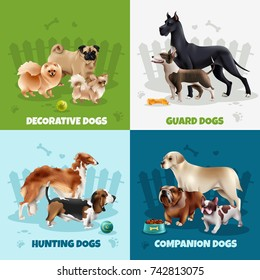 Four squares dog breeds design icon set with decorative guard hunting companion dogs descriptions vector illustration