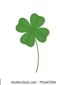 Four-leafed clover isolated on white background. Vector illustration