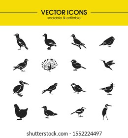 Fowl icons set with myna, humming bird and turtledove elements. Set of fowl icons and peafowl concept. Editable vector elements for logo app UI design.